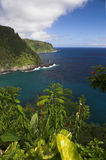 ακτή Hana γεια Maui Στοκ φωτογραφία με δικαίωμα ελεύθερης χρήσης