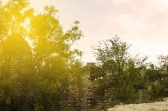 ακτίνα ηλιόλουστη στοκ φωτογραφίες