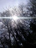 Ακτίνα του φωτός στον οδηγό στοκ εικόνες με δικαίωμα ελεύθερης χρήσης