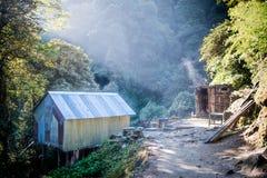 Ακτίνες ήλιων στο δάσος στο κύκλωμα οδοιπορίας Annapurna, Ιμαλάια, Nepa Στοκ φωτογραφίες με δικαίωμα ελεύθερης χρήσης