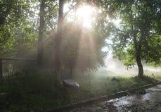 Ακτίνες ήλιων μετά από τη θύελλα στοκ εικόνα