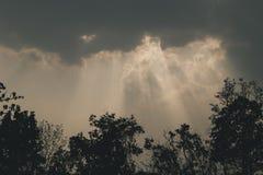 Ακτίνες ήλιων που λάμπουν κάτω από την εκλεκτής ποιότητας επίδραση τόνου ταινιών δέντρων σκιαγραφιών Στοκ Εικόνα