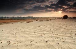 Ακτίνες ανατολής πέρα από τον αμμόλοφο άμμου Στοκ εικόνες με δικαίωμα ελεύθερης χρήσης