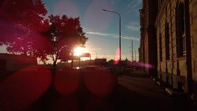Ακτίνες μέσω του δέντρου Στοκ εικόνες με δικαίωμα ελεύθερης χρήσης