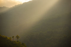 Ακτίνες της ελαφριάς περιοχής συντήρησης Annapurna, Ulleri, Νεπάλ Στοκ φωτογραφίες με δικαίωμα ελεύθερης χρήσης