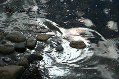 ακτίνες του ήλιου ρύθμισης, σύννεφα πέρα από τη θάλασσα, ο Βορράς άγριας φύσης Στοκ εικόνα με δικαίωμα ελεύθερης χρήσης