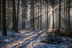 Ακτίνες του ήλιου Στοκ Εικόνες