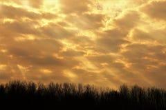 Ακτίνες του λαμπρού φωτός του ήλιου στοκ εικόνες με δικαίωμα ελεύθερης χρήσης