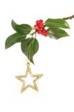 Ακτινοβολήστε αστέρι και ελαιόπρινος Χριστουγέννων Στοκ φωτογραφία με δικαίωμα ελεύθερης χρήσης