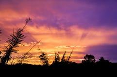 Ακτινοβόλο ηλιοβασίλεμα Στοκ Φωτογραφία