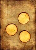 ακτοφύλακες γύρω από τρία Στοκ εικόνα με δικαίωμα ελεύθερης χρήσης