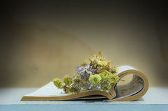 Ακόμα βιβλίο ζωής με το λουλούδι στον πίνακα και το ξύλινο υπόβαθρο Στοκ Εικόνα