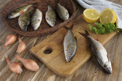 Ακόμα ζωή με τα ακατέργαστα ψάρια ποταμών Στοκ φωτογραφία με δικαίωμα ελεύθερης χρήσης