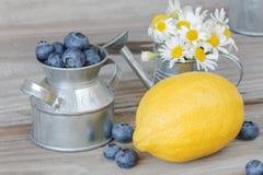 Ακόμα ζωή με τα βακκίνια, λεμόνι και chamomiles Στοκ εικόνες με δικαίωμα ελεύθερης χρήσης