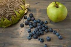 Ακόμα ζωή με τα βατόμουρα, το μήλο και τον ηλίανθο στοκ φωτογραφία με δικαίωμα ελεύθερης χρήσης