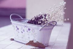 Ακόμα ζωή με τα ξηρά λουλούδια Στοκ Εικόνες