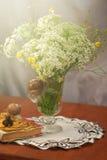 Ακόμα ζωή με τα λουλούδια Apiaceae και burgundy το σαλιγκάρι Εποχιακό υπόβαθρο άνοιξη Στοκ φωτογραφίες με δικαίωμα ελεύθερης χρήσης