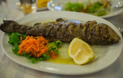 Ακόμα ζωή με τα τηγανισμένα ψάρια, τα λαχανικά και τα χορτάρια Στοκ φωτογραφίες με δικαίωμα ελεύθερης χρήσης