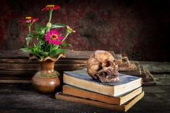 Ακόμα ζωή με το κρανίο και το βιβλίο, βάζο λουλουδιών Στοκ Εικόνα