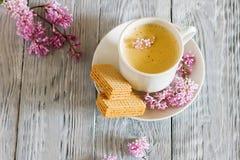 Ακόμα ζωή με το λουλούδι φλιτζανιών του καφέ και άνοιξη liliac Στοκ Εικόνα