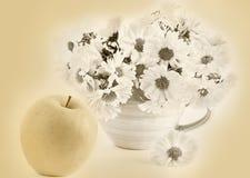 Ακόμα ζωή με το μήλο και ένα φλυτζάνι, σέπια στοκ εικόνα με δικαίωμα ελεύθερης χρήσης