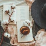 Ακόμα ζωή στο εγχώριο εσωτερικό του καθιστικού Πουλόβερ και φλυτζάνι του τσαγιού με έναν κώνο στα βιβλία διαβάστε Άνετη χειμερινή στοκ εικόνες
