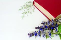 Ακόμα ζωή του βιβλίου του κόκκινου χρώματος στα λουλούδια σε ένα άσπρο υπόβαθρο Στοκ Εικόνα