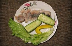 Ακόμα-ζωή Τρόφιμα Ρέγγες, σαλάτα, ντομάτα, αγγούρι στοκ εικόνες