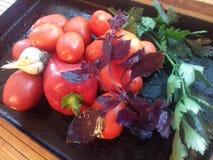 Ακόμα ζωή των λαχανικών φθινοπώρου, ντομάτες, πιπέρια, σκόρδο, βασιλικός, Celera Στοκ φωτογραφία με δικαίωμα ελεύθερης χρήσης
