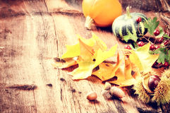 Ακόμα-ζωή φθινοπώρου με τις κολοκύθες και τα δρύινα φύλλα στοκ φωτογραφίες με δικαίωμα ελεύθερης χρήσης