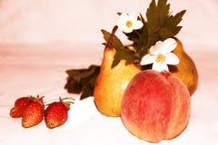 Ακόμα ζωή: φρούτα, λουλούδια και μούρα στοκ φωτογραφίες με δικαίωμα ελεύθερης χρήσης