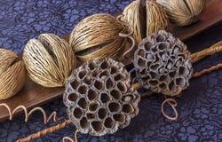 Ακόμα ζωή - ikebana των ξηρών lotuses και των σφαιρών καρύδων πλεκτό κλωστοϋφαντουργικό προϊόν μαντίλι ανασκόπησης κινηματογράφησ στοκ φωτογραφία με δικαίωμα ελεύθερης χρήσης