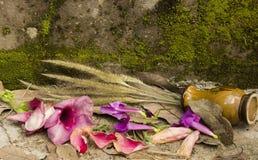 Ακόμα η ζωή εξασθενίζει το λουλούδι Στοκ εικόνα με δικαίωμα ελεύθερης χρήσης