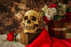 Ακόμα η ζωή με το ανθρώπινο κρανίο με το κόκκινο αυξήθηκε και άσπρος αυξήθηκε Στοκ Φωτογραφία