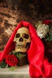 Ακόμα η ζωή με το ανθρώπινο κρανίο με το κόκκινο αυξήθηκε και άσπρος αυξήθηκε Στοκ Φωτογραφίες