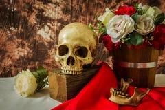 Ακόμα η ζωή με το ανθρώπινο κρανίο με το κόκκινο αυξήθηκε και άσπρος αυξήθηκε Στοκ Εικόνες