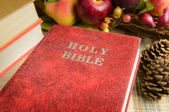 Ακόμα κόκκινη ιερή Βίβλος ζωής Στοκ Φωτογραφίες