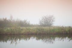Ακόμα λίμνη το ομιχλώδες πρωί, αγροτικό τοπίο Στοκ φωτογραφίες με δικαίωμα ελεύθερης χρήσης