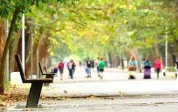 Αλέα πάρκων στοκ φωτογραφία
