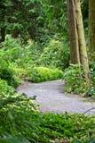 Αλέα στο βοτανικό κήπο, Δουβλίνο, Ιρλανδία στοκ εικόνες
