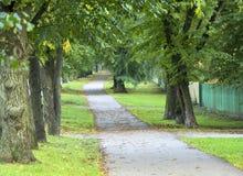 Αλέα 1 δέντρων φθινοπώρου Στοκ Φωτογραφίες