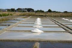 Αλατισμένα έλη Guérande στοκ φωτογραφία με δικαίωμα ελεύθερης χρήσης
