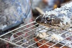 Αλατισμένα εφελκιδώδη ψημένα στη σχάρα ψάρια Στοκ Εικόνες