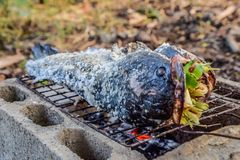 Αλατισμένα εφελκιδώδη ψημένα στη σχάρα ψάρια Snakehead στη σόμπα ξυλάνθρακα στοκ φωτογραφία με δικαίωμα ελεύθερης χρήσης