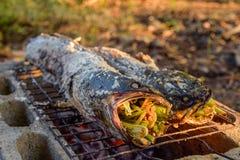 Αλατισμένα εφελκιδώδη ψημένα στη σχάρα ψάρια Snakehead στοκ φωτογραφία