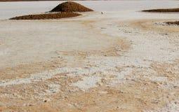 Αλατισμένα κρύσταλλα στο έδαφος Στοκ φωτογραφία με δικαίωμα ελεύθερης χρήσης