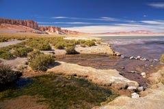 Αλατισμένη λίμνη Salar de Tara, Χιλή Στοκ Εικόνα