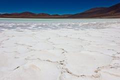 Αλατισμένη cristal δομή στην έρημο Atacama στοκ εικόνες με δικαίωμα ελεύθερης χρήσης