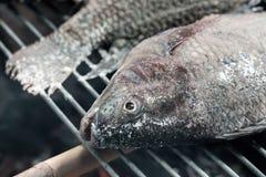 Αλατισμένος-εφελκιδώδη ψημένα στη σχάρα ψάρια Στοκ Φωτογραφία