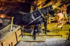 Αλατισμένο ορυχείο στοκ εικόνα